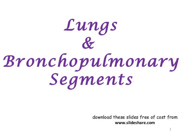 Lungs & Bronchopulmonary Segments 1 download these slides free of cost from www.slideshare.com