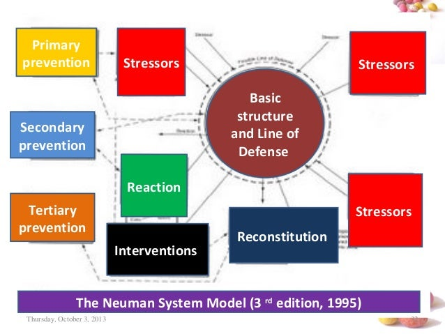 Neuman Systems Model in Nursing Practice