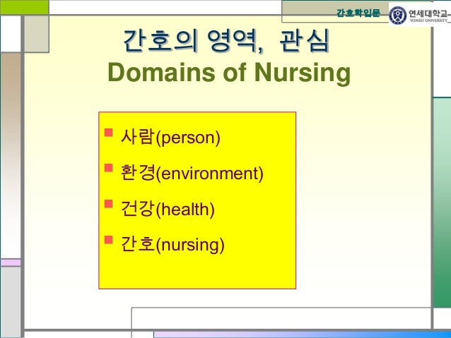 Four Basic Metaparadigm Concepts in Nursing