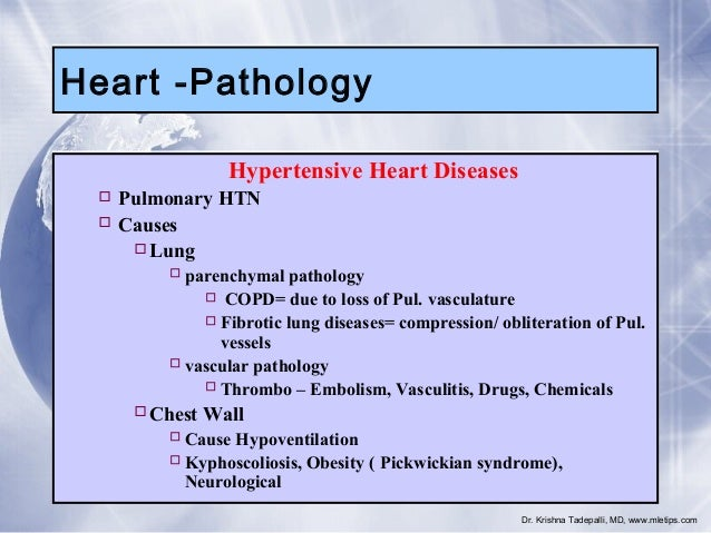 Heart -Pathology Hypertensive Heart Diseases  Pulmonary HTN  Causes Lung  parenchymal pathology  COPD= due to loss of...