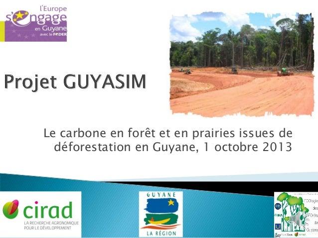 Le carbone en forêt et en prairies issues de déforestation en Guyane, 1 octobre 2013