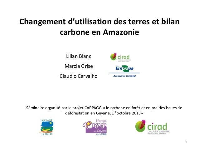 Changement d'utilisation des terres et bilan carbone en Amazonie Lilian Blanc Marcia Grise Claudio Carvalho  Séminaire org...