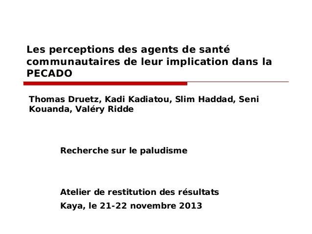 Les perceptions des agents de santé communautaires de leur implication dans la PECADO Thomas Druetz, Kadi Kadiatou, Slim H...