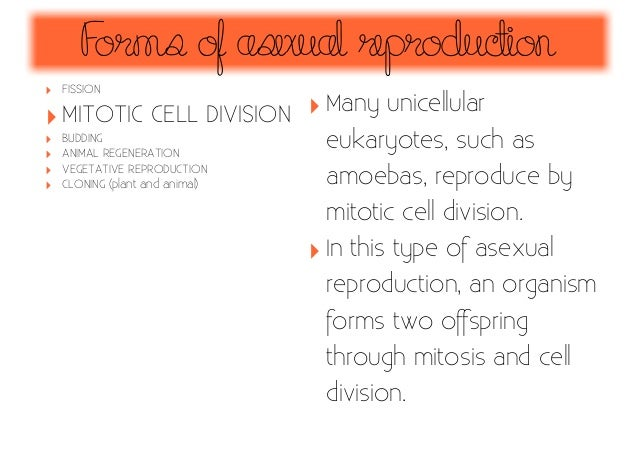 Regeneration form asexual reproduction advantages