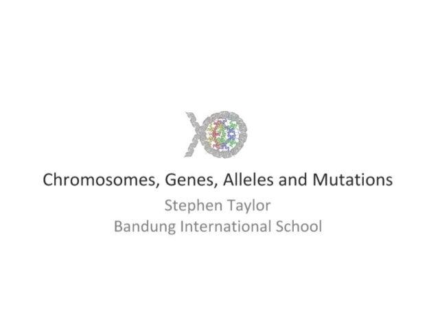 4.1 chromo, genes, alleles & muts ppt i bio