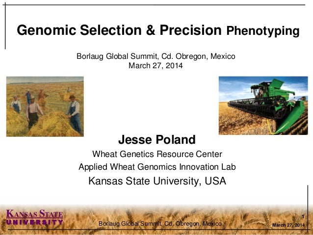 KANSAS STATE U N I V E R S I T Y Jesse Poland Wheat Genetics Resource Center Applied Wheat Genomics Innovation Lab Kansas ...