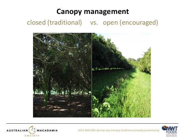 Alana Danne - The role of canopy density and ground-cover vegetation on pest and beneficial insects  sc 1 st  SlideShare & Alana Danne - The role of canopy density and ground-cover vegetation u2026