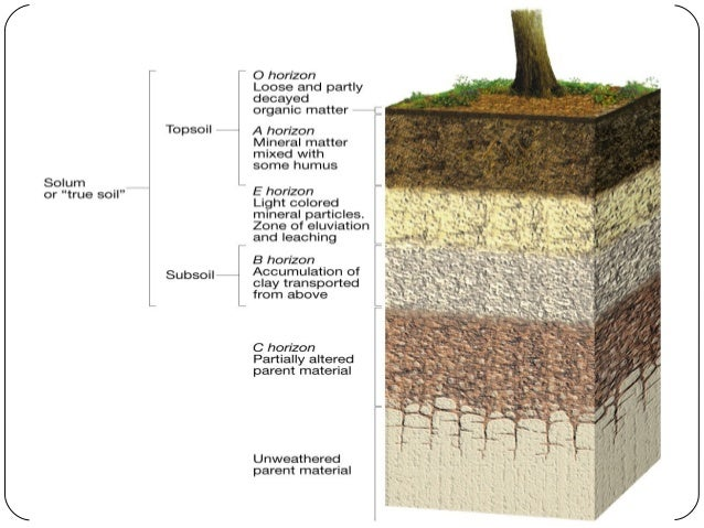 Soil pollution for What is dirt composed of