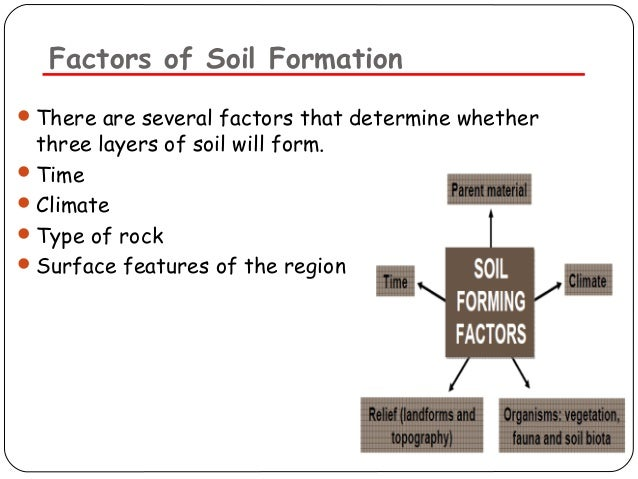 Soil pollution for Soil forming factors