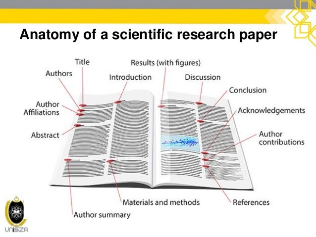 Anatomy of a scientific article