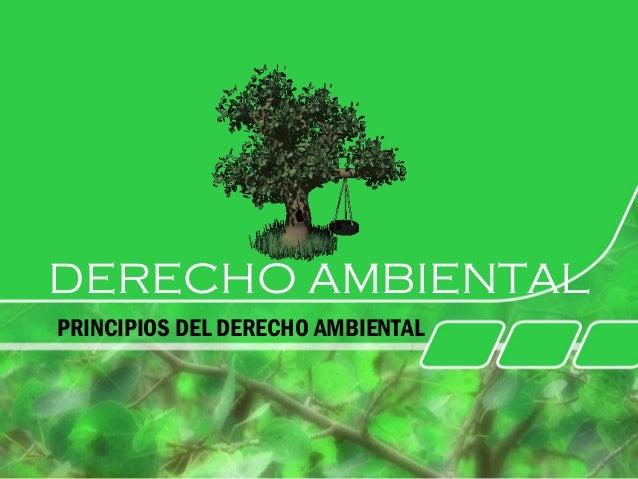 DERECHO AMBIENTAL PRINCIPIOS DEL DERECHO AMBIENTAL