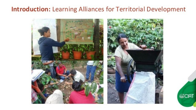 Introduction: Learning Alliances for Territorial Development