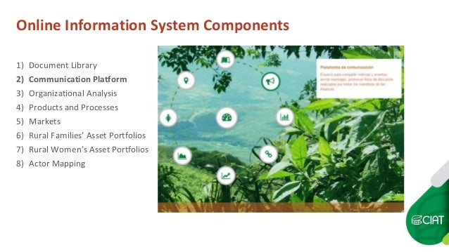 Online Information System Components 1) Document Library 2) Communication Platform 3) Organizational Analysis 4) Products ...