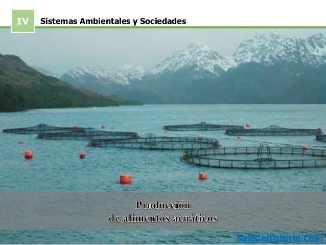 IV saladehistoria.com Sistemas Ambientales y Sociedades