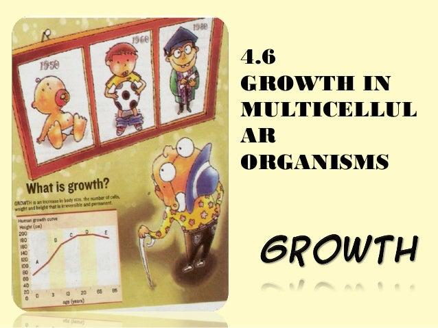 4.6 GROWTH IN MULTICELLUL AR ORGANISMS