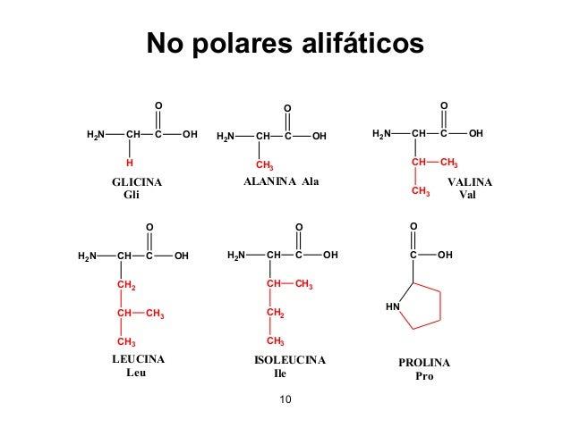 12 Polares sin carga H2N CH C CH2 OH O OH H2N CH C CH OH O OH CH3 H2N CH C CH2 OH O SH H2N CH C CH2 OH O CH2 C NH2 O H2N C...
