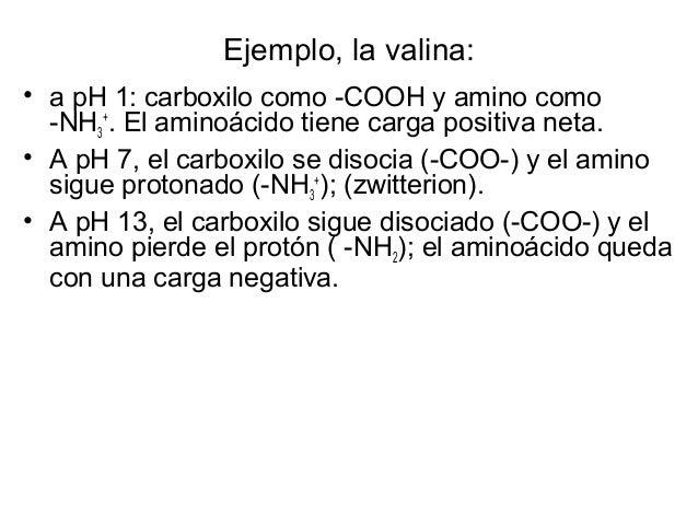 Punto isoelectrico • pH en el cual un aminoácido tiende a adoptar una forma dipolar neutra. • La solubilidad en agua de un...