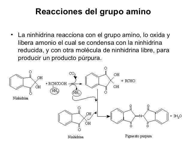 ReaccionesdelgrupoCOO- •Conbromohidrurodelitio. •REACCIONES DEL GRUPO R. •Reaccionesespecíficas: •ReaccióndeMillo...