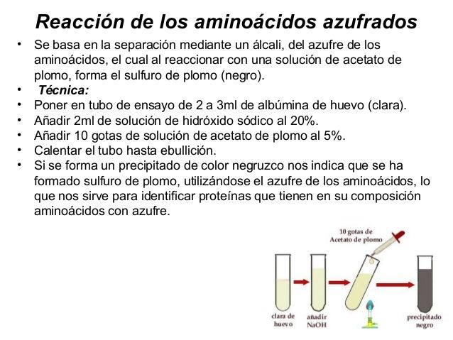 AminoacidosD • UngrupodecientíficosdelaUniversidaddeHarvard,con lacolaboracióndeinvestigadoresdelCentroBi...