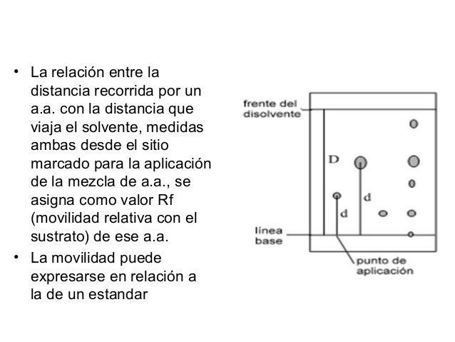 Cromatografía en capa fina Es muy similar a la cromatografía en papel, pero se utiliza como fase estacionaria unos soporte...
