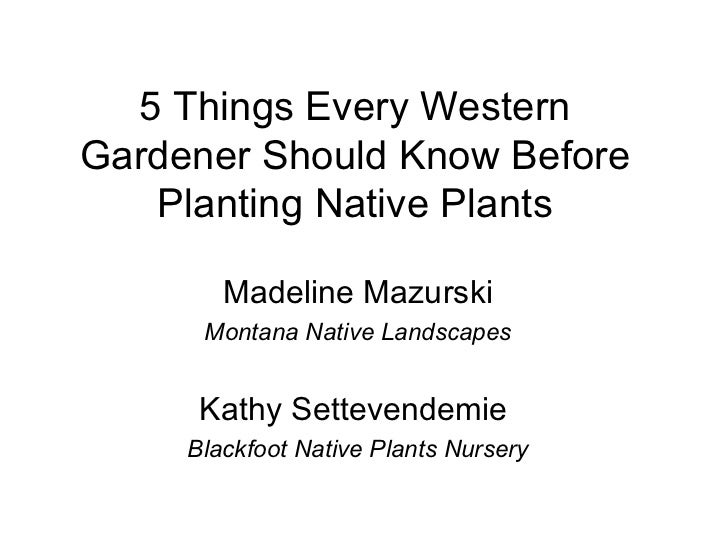 5 Things Every WesternGardener Should Know Before   Planting Native Plants        Madeline Mazurski      Montana Native La...