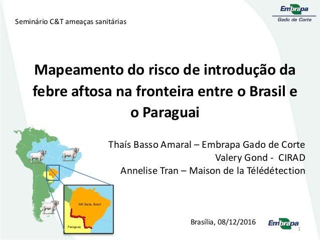 Mapeamento do risco de introdução da febre aftosa na fronteira entre o Brasil e o Paraguai Thaís Basso Amaral – Embrapa Ga...