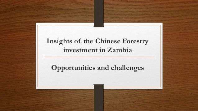 Insights of the Chinese Forestry investment in Zambia Opportunities and challenges
