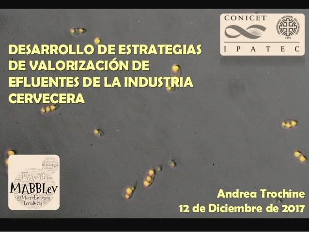 DESARROLLO DE ESTRATEGIAS DE VALORIZACIÓN DE EFLUENTES DE LA INDUSTRIA CERVECERA Andrea Trochine 12 de Diciembre de 2017