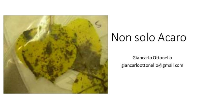 Non solo Acaro Giancarlo Ottonello giancarloottonello@gmail.com