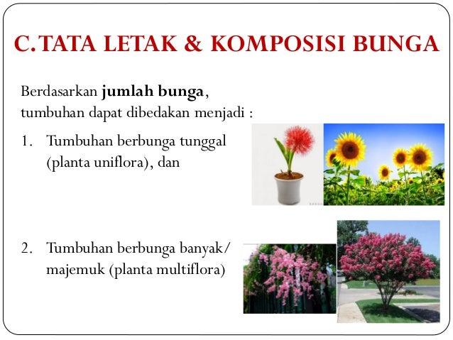 4 Morfologi Bunga