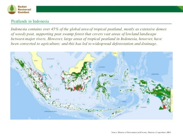 Best Practices on Indonesia's Peatland Management: Lesson Learnt, Opportunities & Challenges - BRG Slide 2