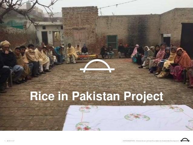 AXFOUNDATION – Antonia Ax:son Johnson Foundation for Sustainable Development2018-11-071 Rice in Pakistan Project