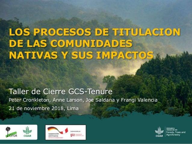 Taller de Cierre GCS-Tenure Peter Cronkleton, Anne Larson, Joe Saldana y Frangi Valencia 21 de noviembre 2018, Lima LOS PR...