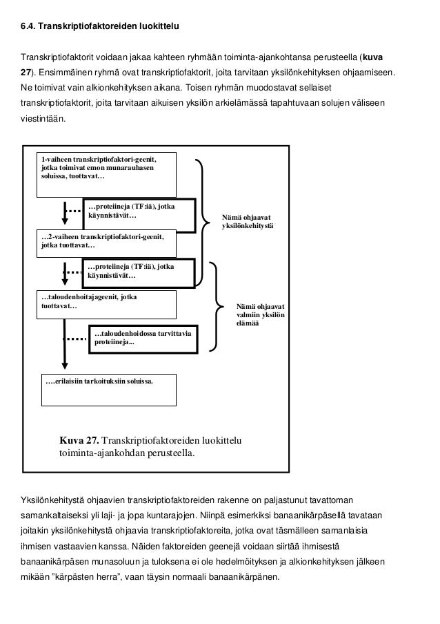 Transkriptiofaktori