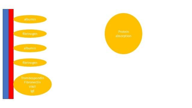 4. anticoagulation during ecmo #beach2019 (peperstraete) Slide 2