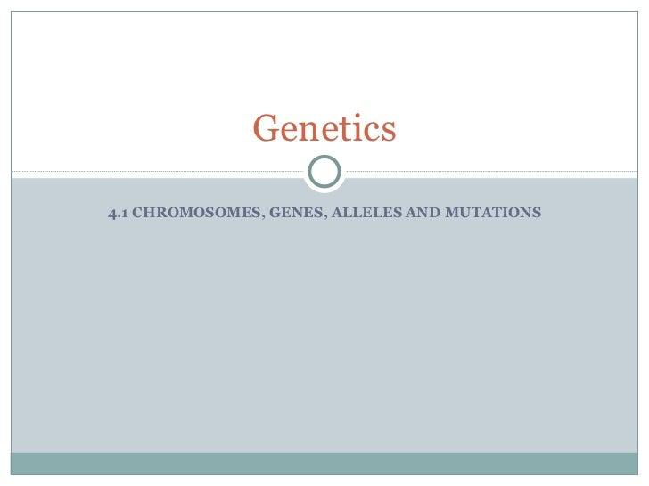 4.1 CHROMOSOMES, GENES, ALLELES AND MUTATIONS Genetics