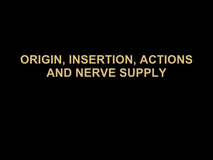 ORIGIN, INSERTION, ACTIONS AND NERVE SUPPLY