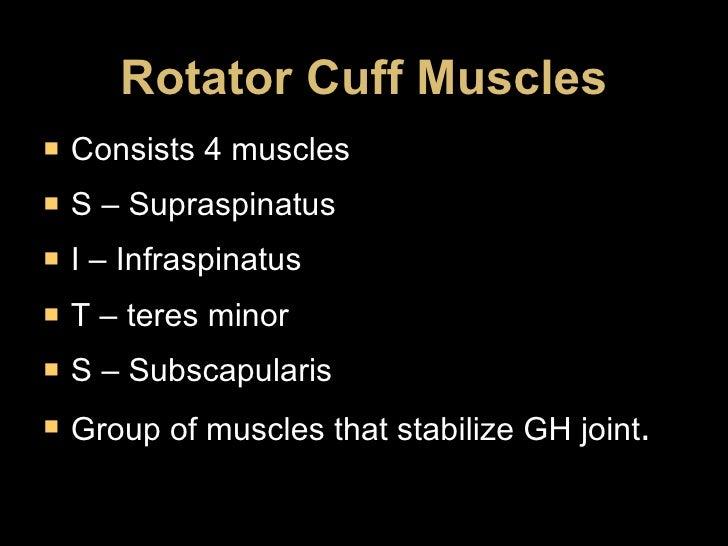 Rotator Cuff Muscles <ul><li>Consists 4 muscles </li></ul><ul><li>S – Supraspinatus </li></ul><ul><li>I – Infraspinatus </...