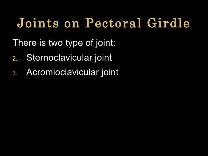 Joints on Pectoral Girdle <ul><li>There is two type of joint: </li></ul><ul><li>Sternoclavicular joint </li></ul><ul><li>A...