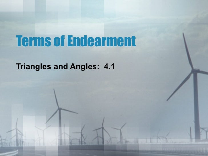 Terms of Endearment Triangles and Angles:  4.1