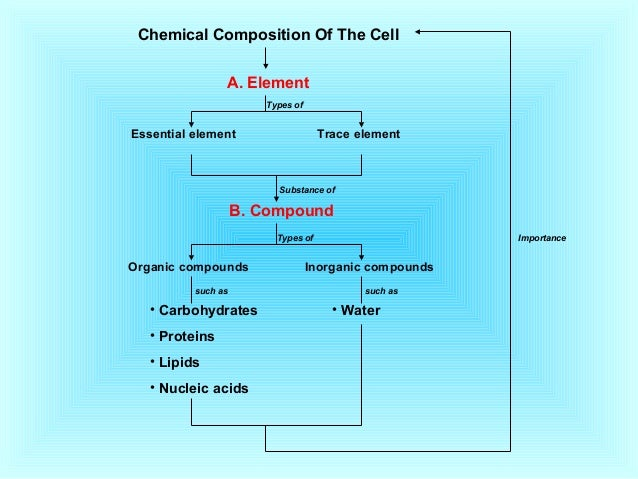 chemical composition of the cell 2017-3-6 this article explores the volume and chemical composition of human blood what is the volume & chemical composition of blood  each red blood cell is.