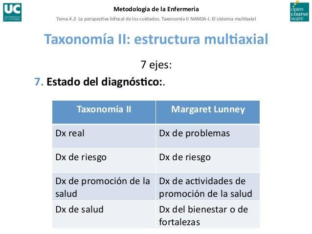 4 2 nanda 2 for Taxonomia de la jirafa