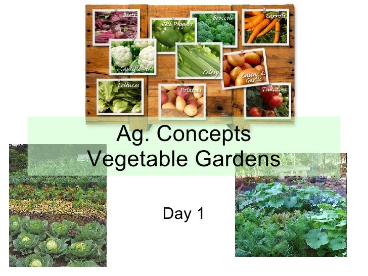 Ag. Concepts Vegetable Gardens Day 1