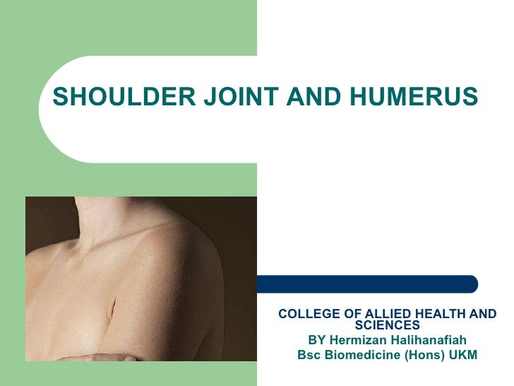 COLLEGE OF ALLIED HEALTH AND SCIENCES BY Hermizan Halihanafiah Bsc Biomedicine (Hons) UKM SHOULDER JOINT AND HUMERUS