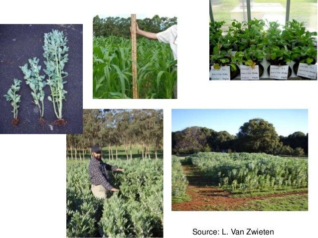 Annette cowie bhupinderpal singh lukas van zwieten the for Soil organic carbon