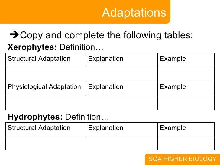 animal adaptation definition - photo #4