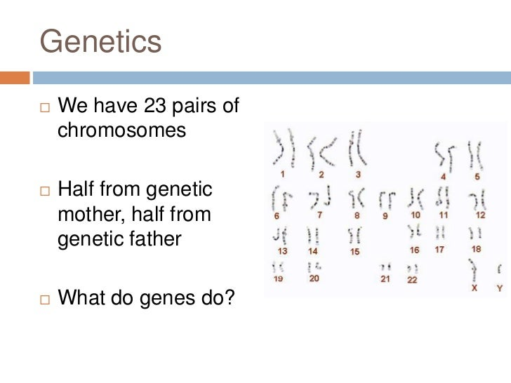 psychology genetics One of the major changes in developmental psychology during the past 50 years  has been the acceptance of the important role of nature (genetics) as well as.