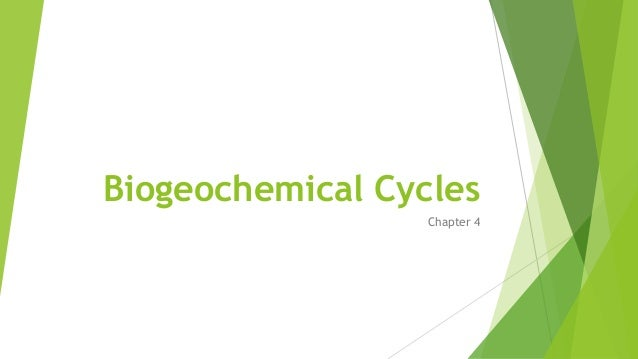 Biogeochemical Cycles Chapter 4