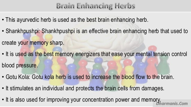 How to increase my concentration and memory power picture 3