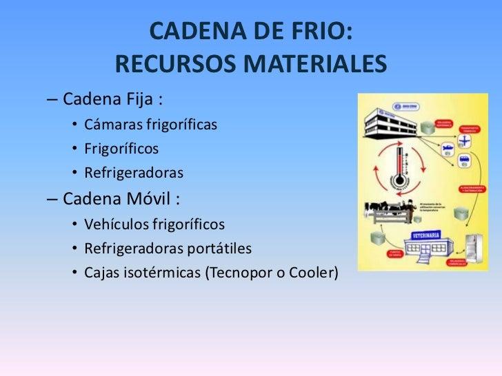 Cadena de frio tipos y aplicaci n - Materiales aislantes de frio ...
